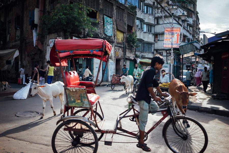 Madelene-Farin-India-0106.jpg