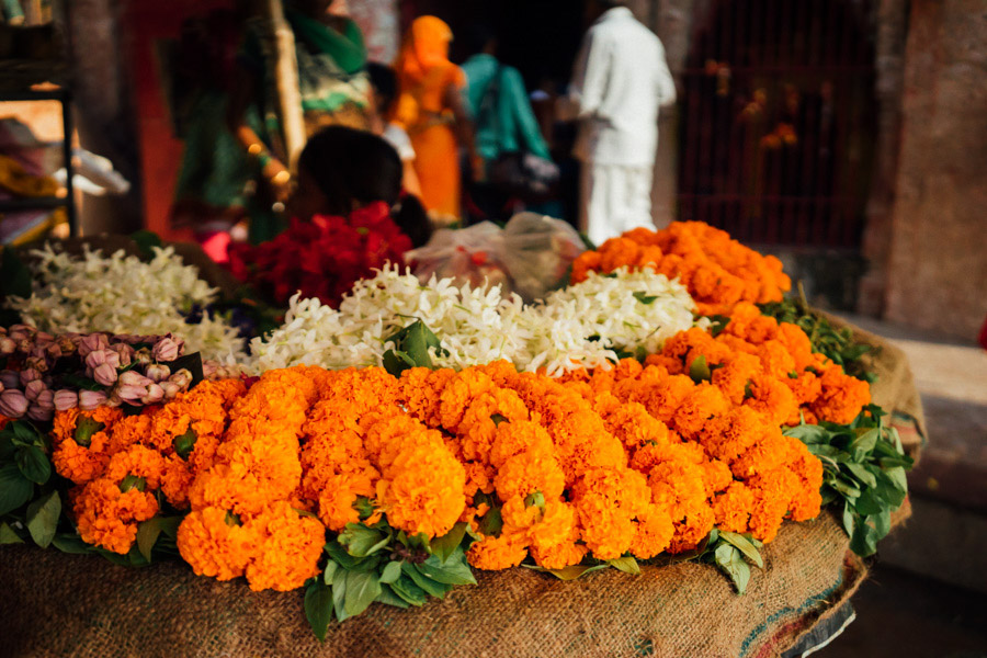 Madelene-Farin-India-0293.jpg
