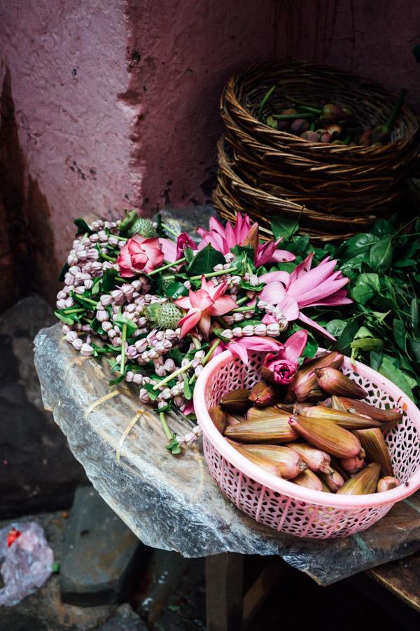 Madelene-Farin-India-0314.jpg