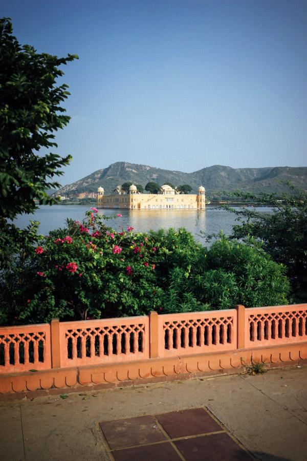 Madelene-Farin-India-0619.jpg