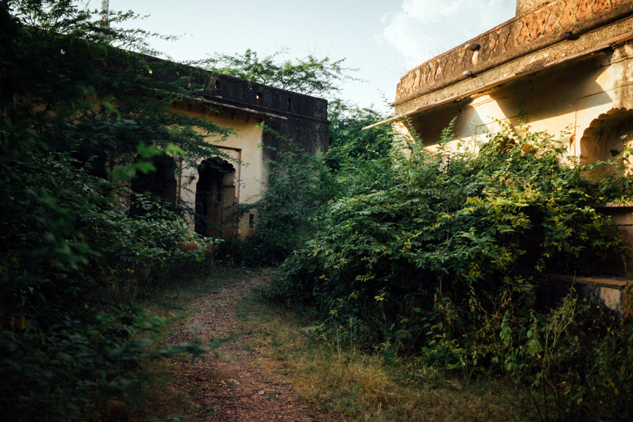 Madelene-Farin-India-0687.jpg