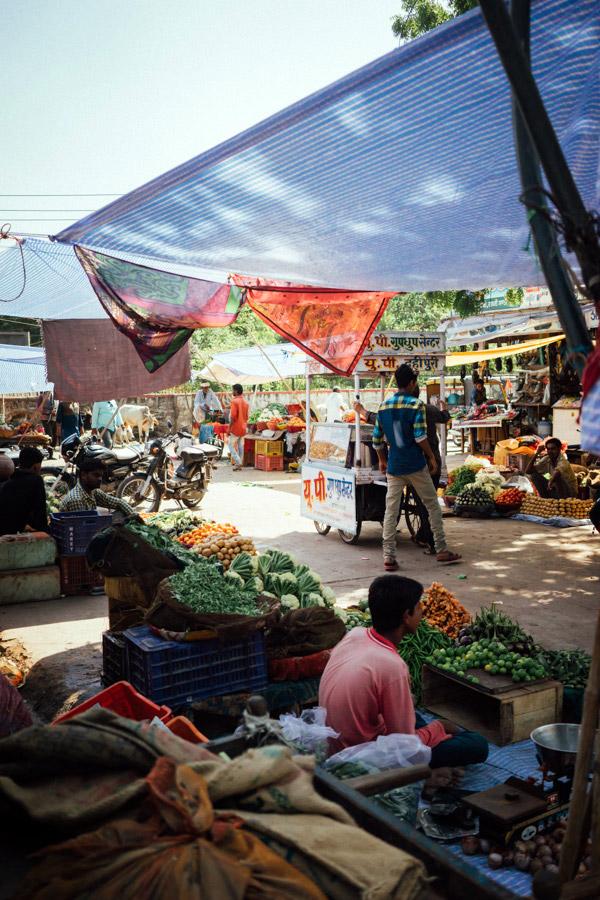 Madelene-Farin-India-0710.jpg