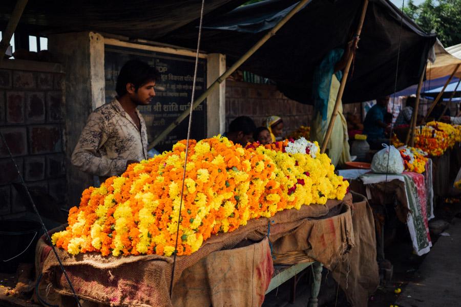 Madelene-Farin-India-0711.jpg