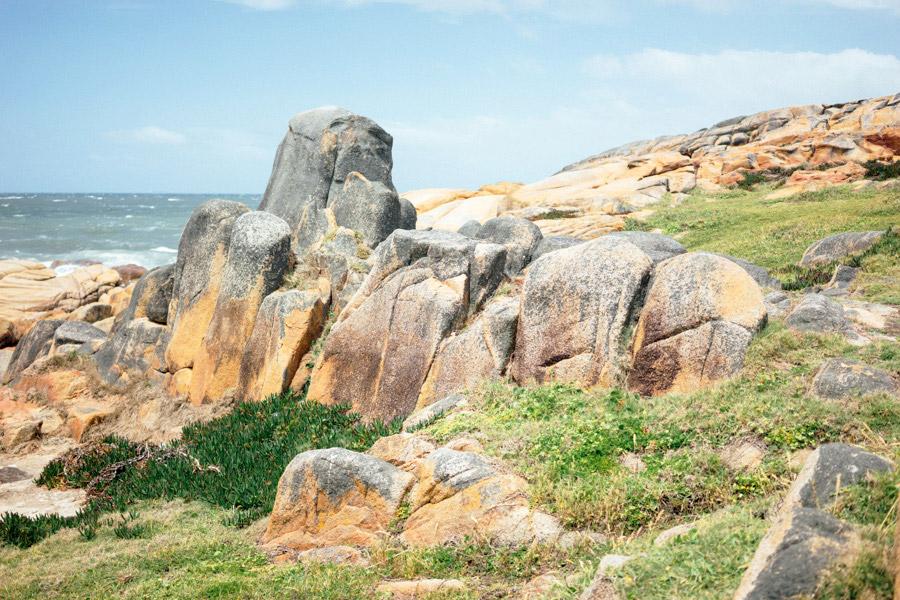 Madelene-Farin-Uruguay-0124.jpg
