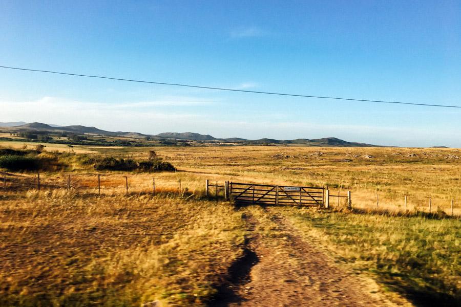 Madelene-Farin-Uruguay-0248.jpg