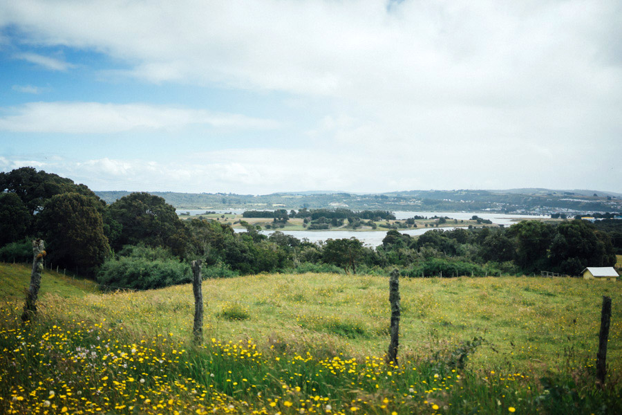 Madelene-Farin-Chile-0301.jpg