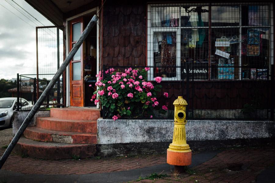 Madelene-Farin-Chile-0337.jpg