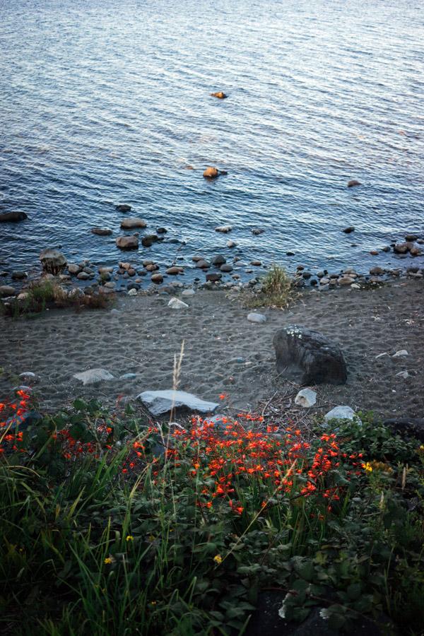 Madelene-Farin-Chile-0418.jpg