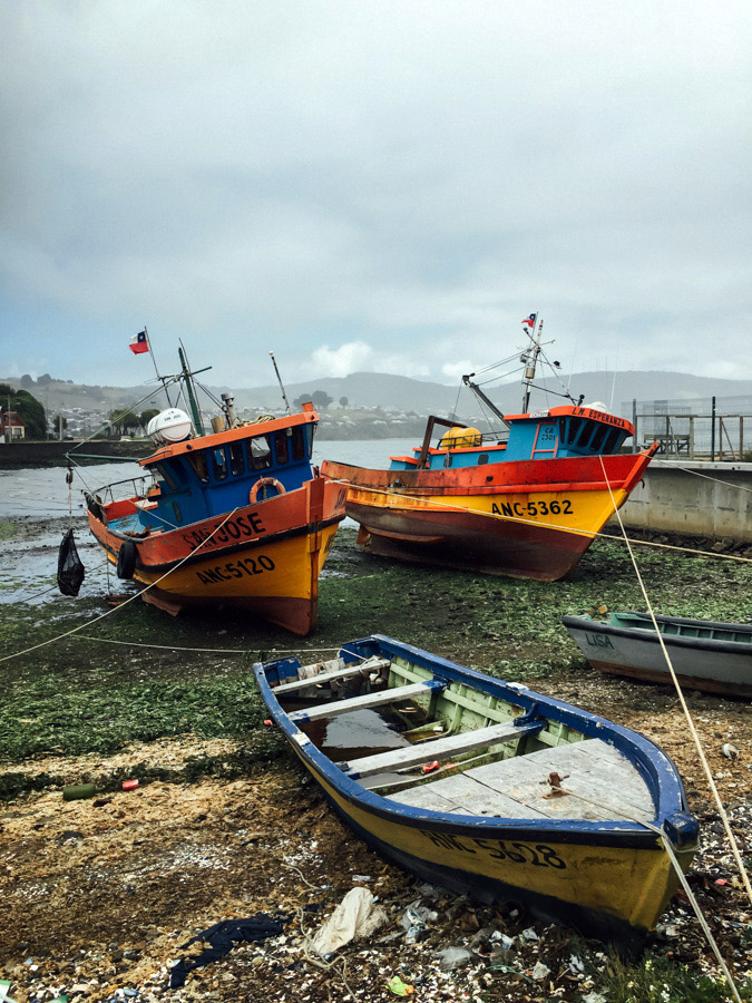 Colorful fishing boats at low tide in Ancud.