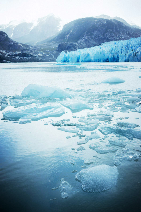 Grey Glacier, up close and personal.