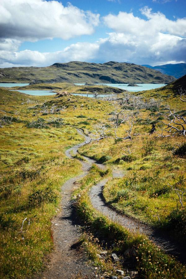 Madelene-Farin-Chile-0737.jpg