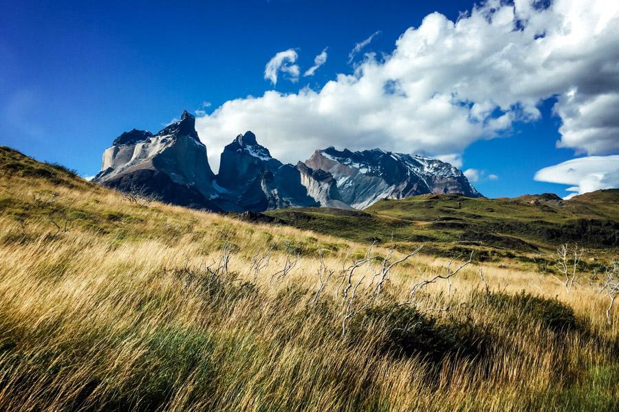 Madelene-Farin-Chile-0747.jpg