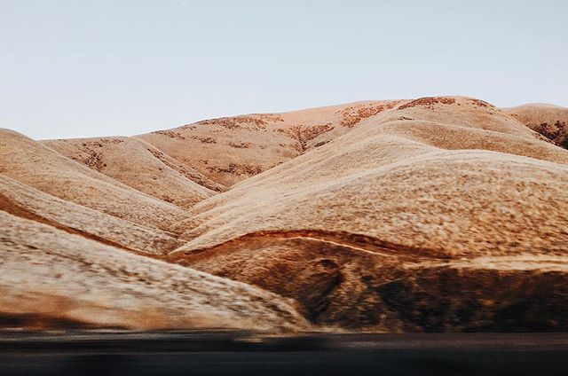 Hills of gold on a classic California road trip between Los Angeles and San Francisco. ----- #roadtrip #california #visitcalifornia #californialove #vsco #vscocam #vscotravel @sonyalpha #sonyimages #sonya7ii #35mm