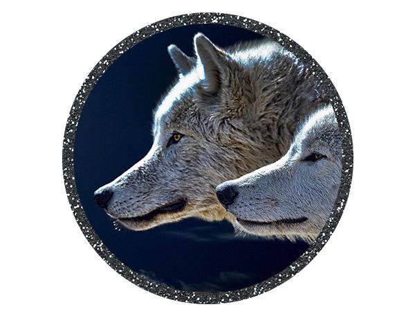 Vanessa Sanddal | Tarot & Spirit Animal Readings | Pet Psychic & Animal Communicator | Missoula, MT