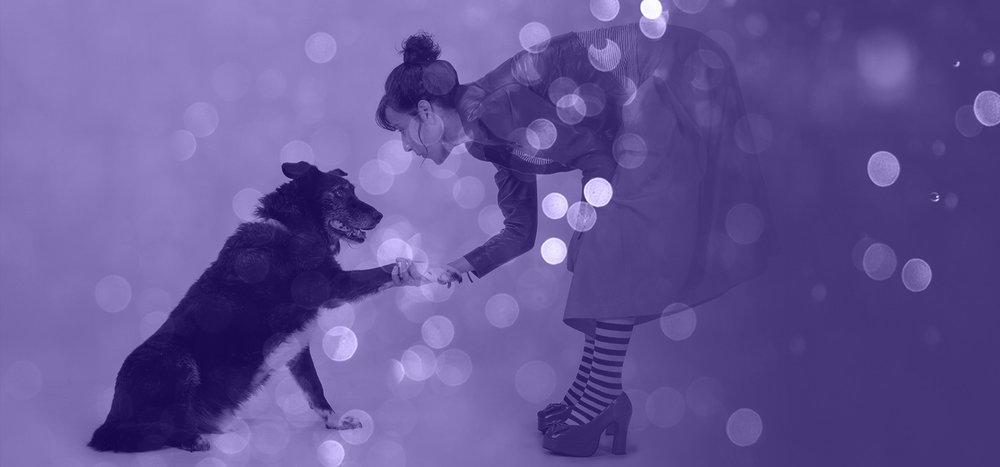 Pet Grief Counseling | Tarot & Spirit Animal Readings | Spiritual Empath & Counselor | Missoula, Montana