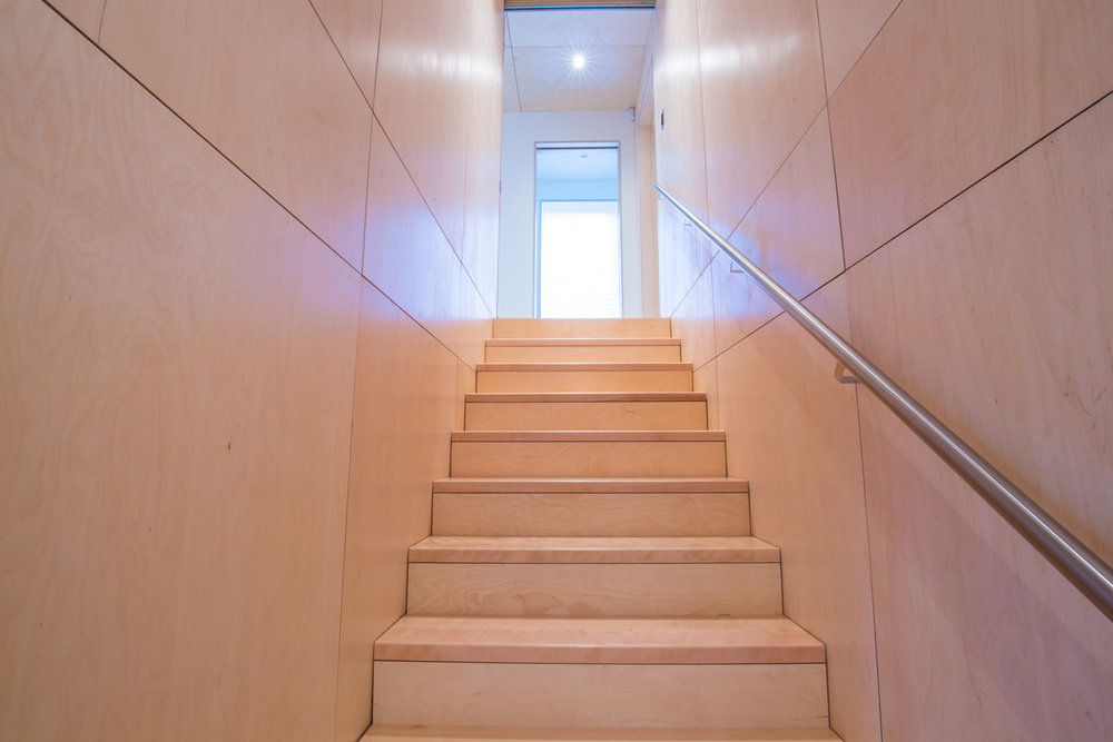 coastal barn _ nova scotia _ nicholas fudge architects _ birch plywood stair case.jpg
