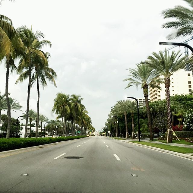 We took off in #Miami on collins avenue with Lea #driving (as always since I - Nastassja - don't actually have my drivers license 😆 ). It's so refreshing to be on an open road! Only... 900 miles 😲... to New Orleans. Follow the story on our blog - link in bio. #Miami #travel #digitalnomad #neworleans #nola #roadtrip #prius #toyota #wanderlust #adventure #travelblogger #nomad #explore #nomadlife #nature #usa #road #wanderer #travelworklive #skyline #palmtrees
