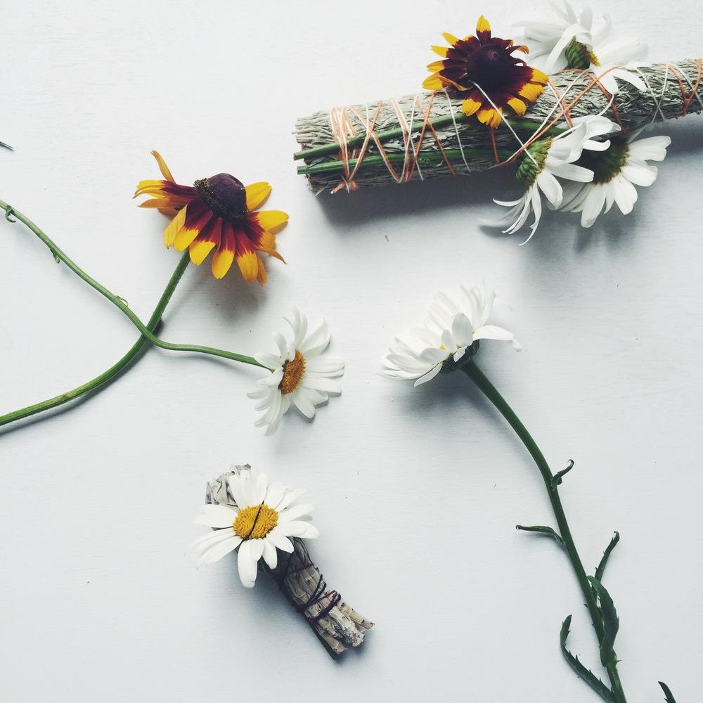 Sage_Sunflower.jpg