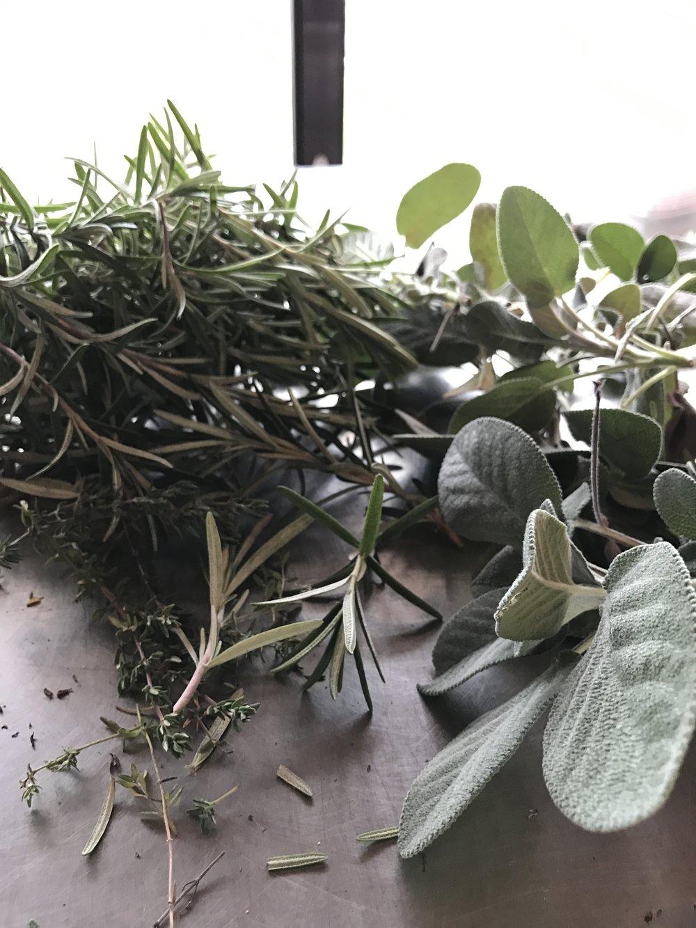 herbs 2016.JPG