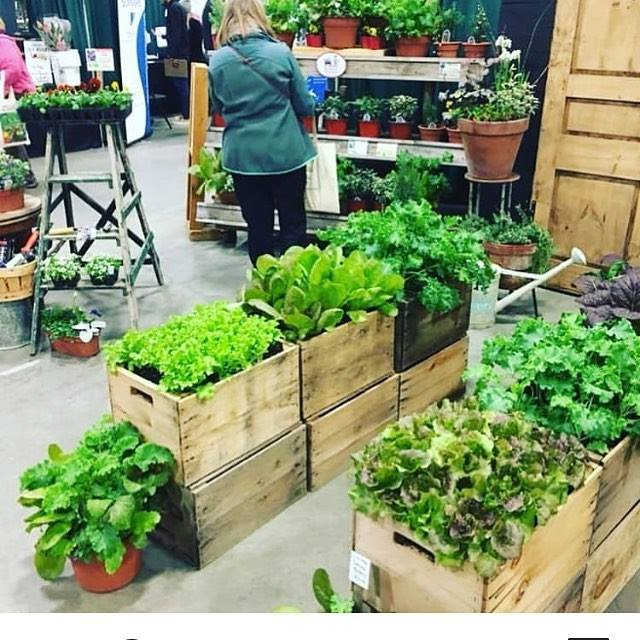 Our apple crate gardens were a big hit at the VT Flower Show recently.
