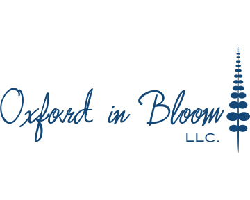 Oxford In Bloom - blueclock dark blue 5x4.jpg