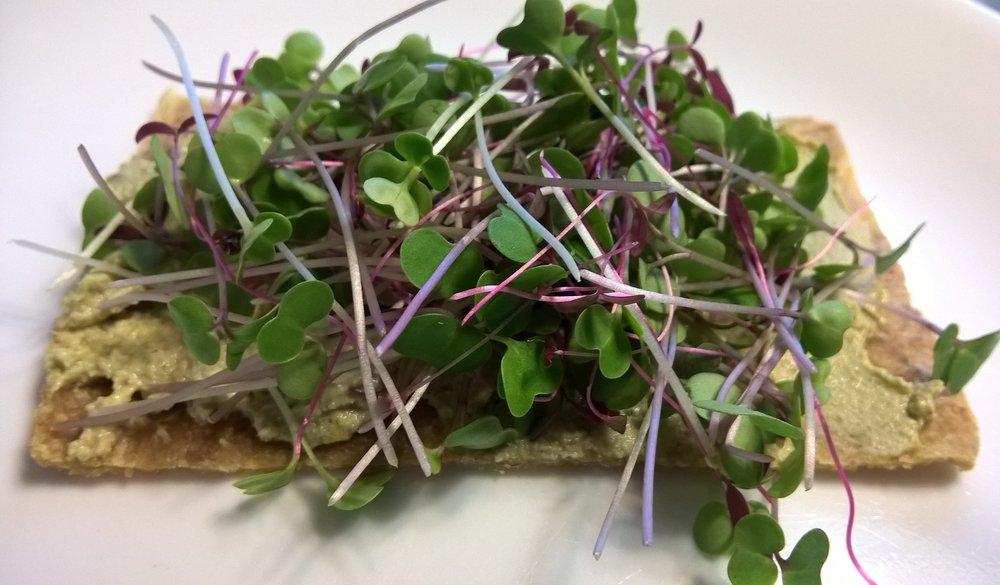 micro greens hummus sandwich.JPG