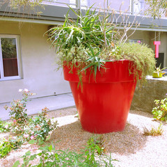 LargeFlowerPotTheGreensHotel_medium.jpg