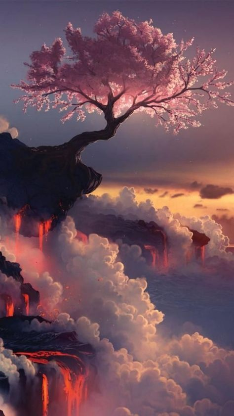 Cherry Blossom Tree, Fuji Volcano, Japan