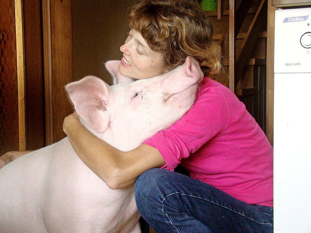 Odi in Ksenija, Zavod za zaščito rejnih živali Koki