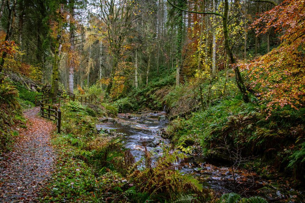Irish-Landscape-4-Geoff-McGrath-Photography.jpg