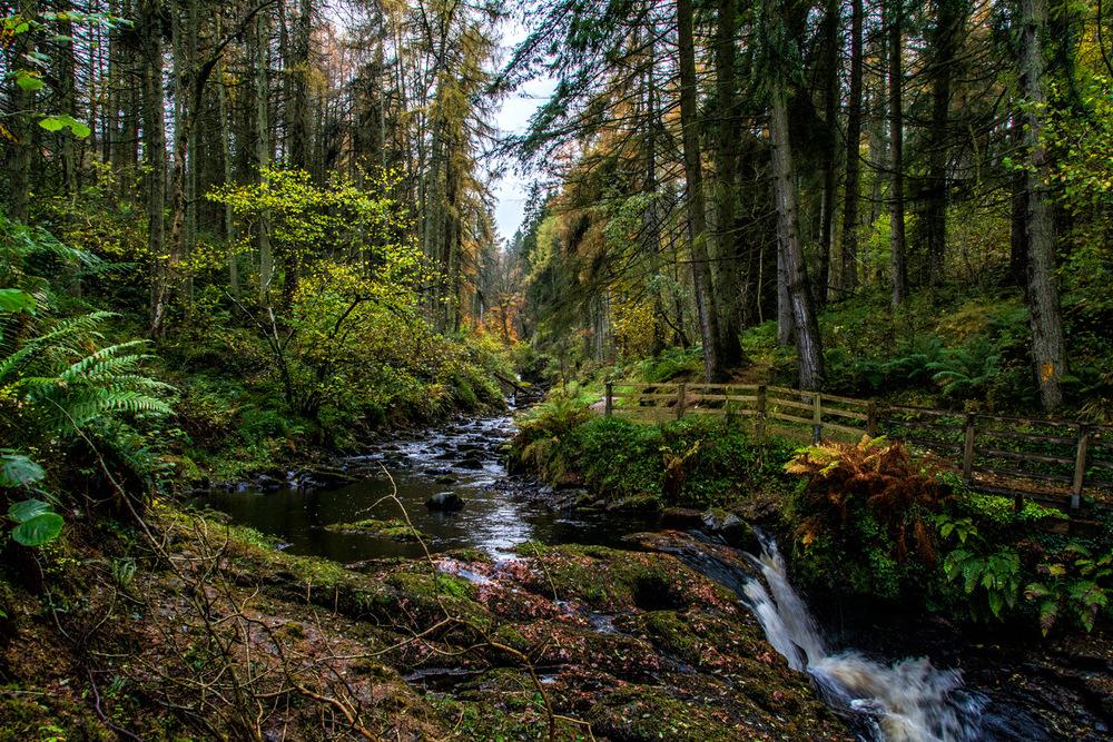 The Glens of Antrim - Irish Landscape - Geoff McGrath