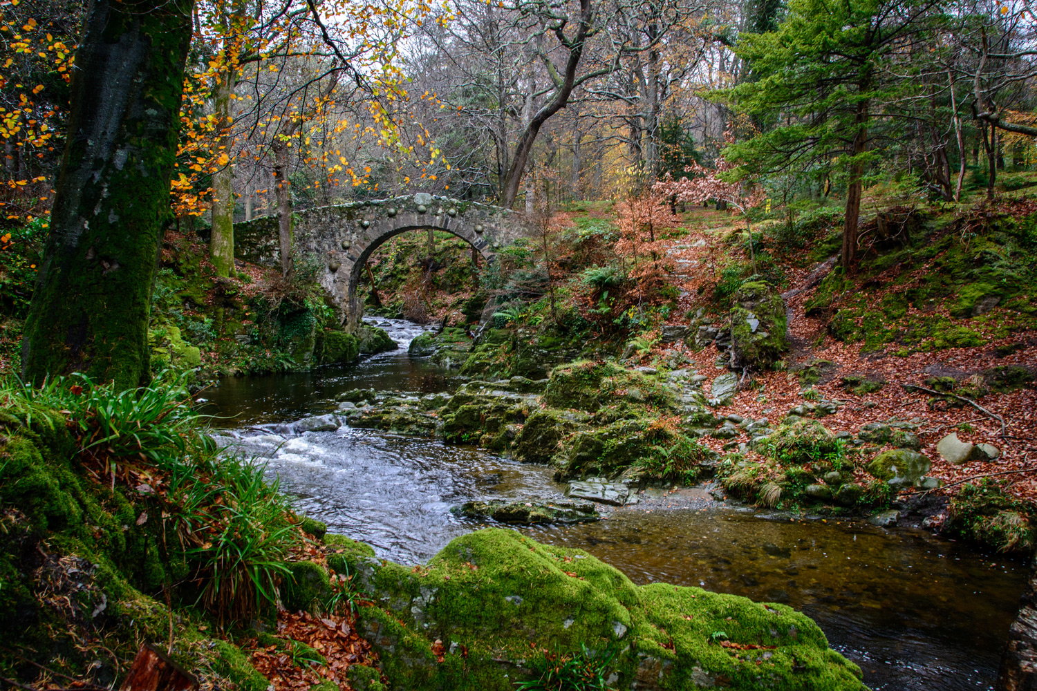 Foley's Bridge, Tollymore - Irish Landscapes by Geoff McGrath