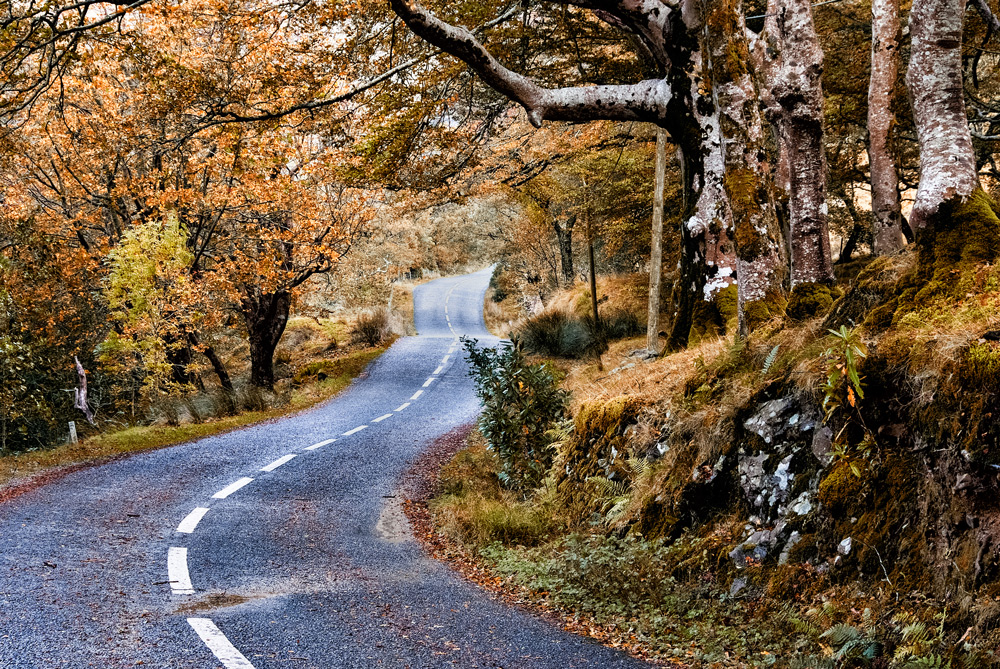 Country Road, Mayo