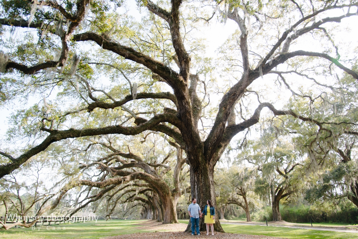Boone Hall Plantation Engagement Photography