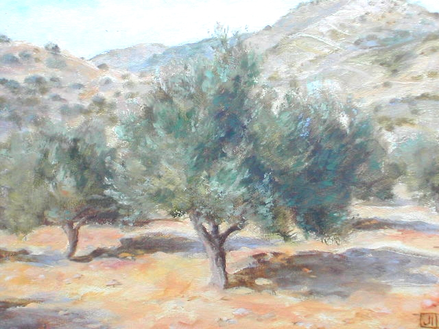 Olive Trees, Paros