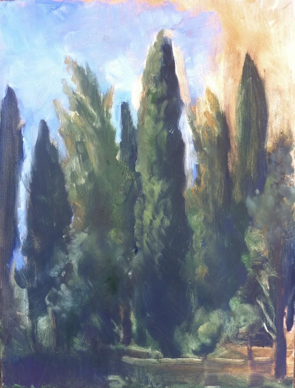 Cypress Study
