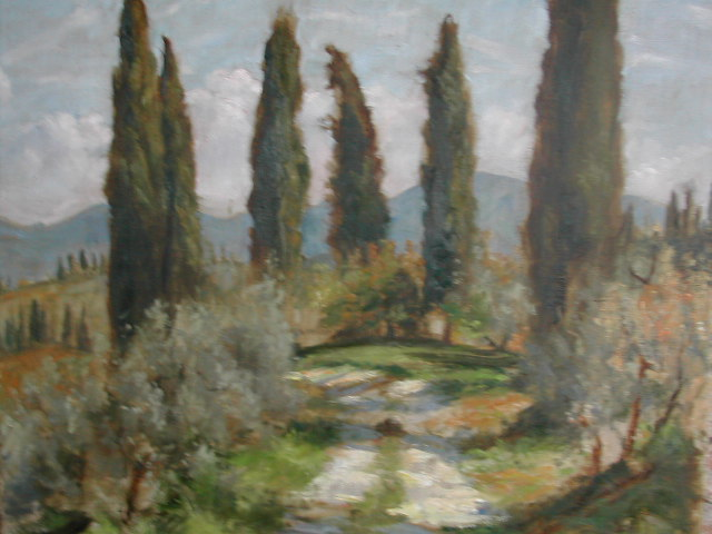 November Cypress