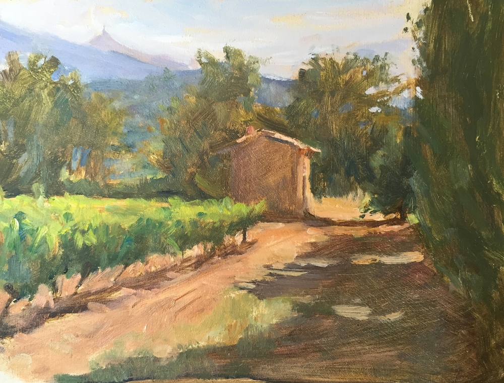 Cabanon in the Vineyards, Mont Ventoux