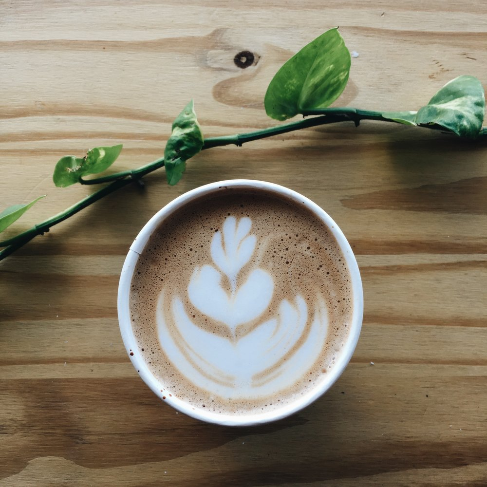 We love the coffee and the people at  Mountaineer Coffee  in downtown Brooksville. Want to meet us there for a drink? Roots Creative Co. would love to show you our favorite spot downtown and chat about your next project.