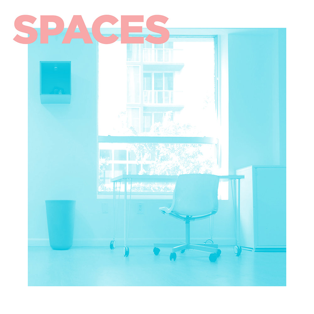 PROFESSIONAL SERVICES - SPACES