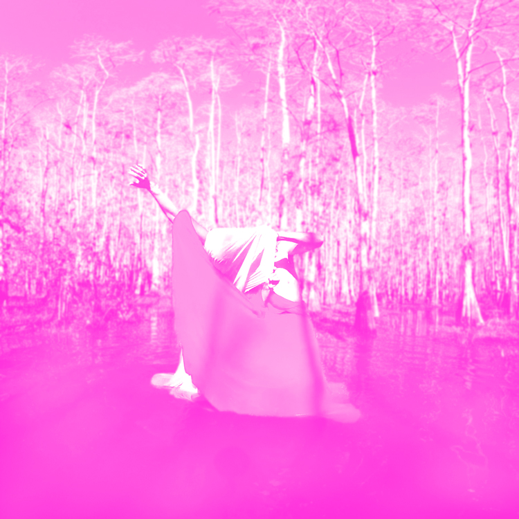 ⫸ THE GHOST, THE SPHINX, AND THE THIEF - A virtual reality, interactive dance film inspired by the natural interdependence of the Ghost Orchid, the Sphinx Moth, and an environmental activist.CREATED BY: Kim Grinfeder, Juan Carlos Zaldívar, Zeven Rodriguez