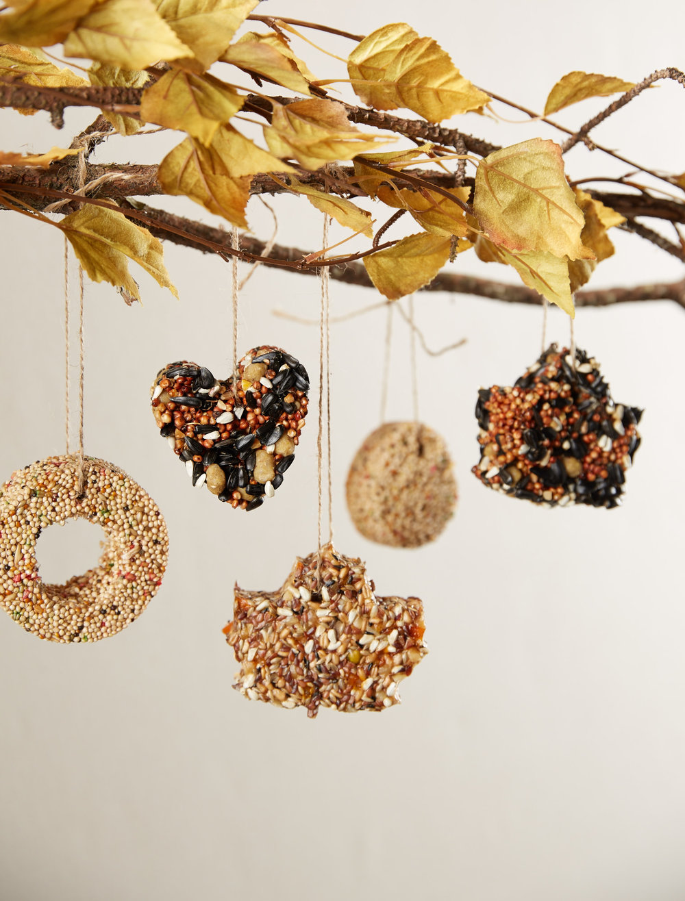 Cookie Cutter Bird Feeders  for  Oshkosh B'Gosh |   Steve Pomberg