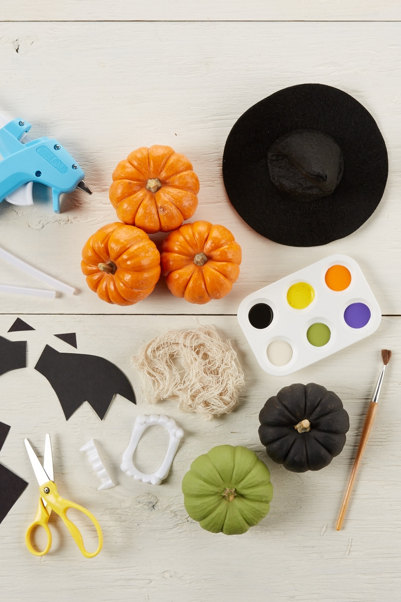 Halloween Mini Pumpkins  for  Carter's |   Steve Pomberg