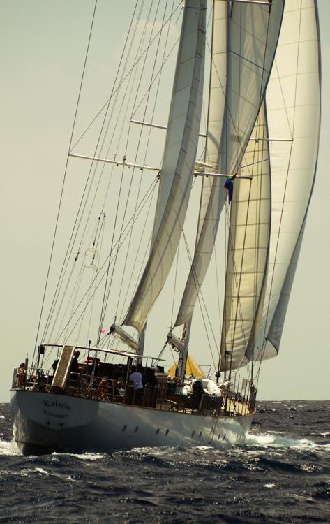 HK-regatta-2013-4-2.jpg