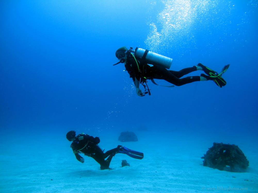 Scuba dive - Ro Ro - Sint Maarten