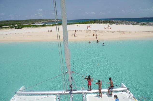 Anguilla-bwi-05.jpg
