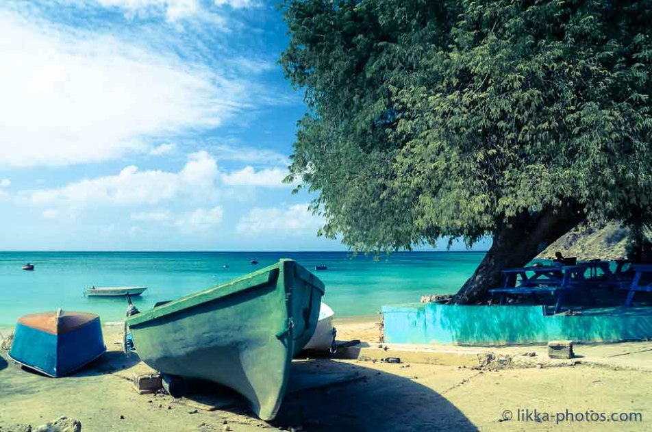 Anguilla-bwi-06.jpg