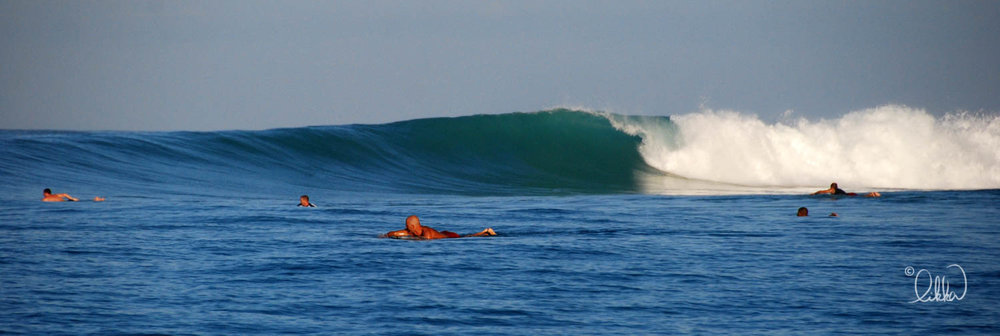 surf-likka-9.jpg