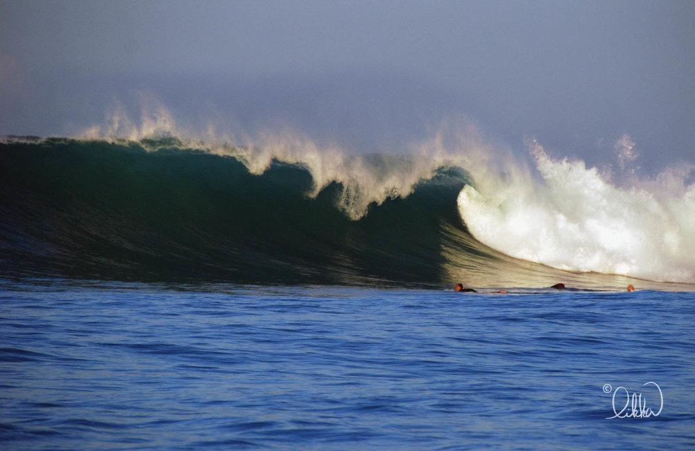 surf-likka-11.jpg