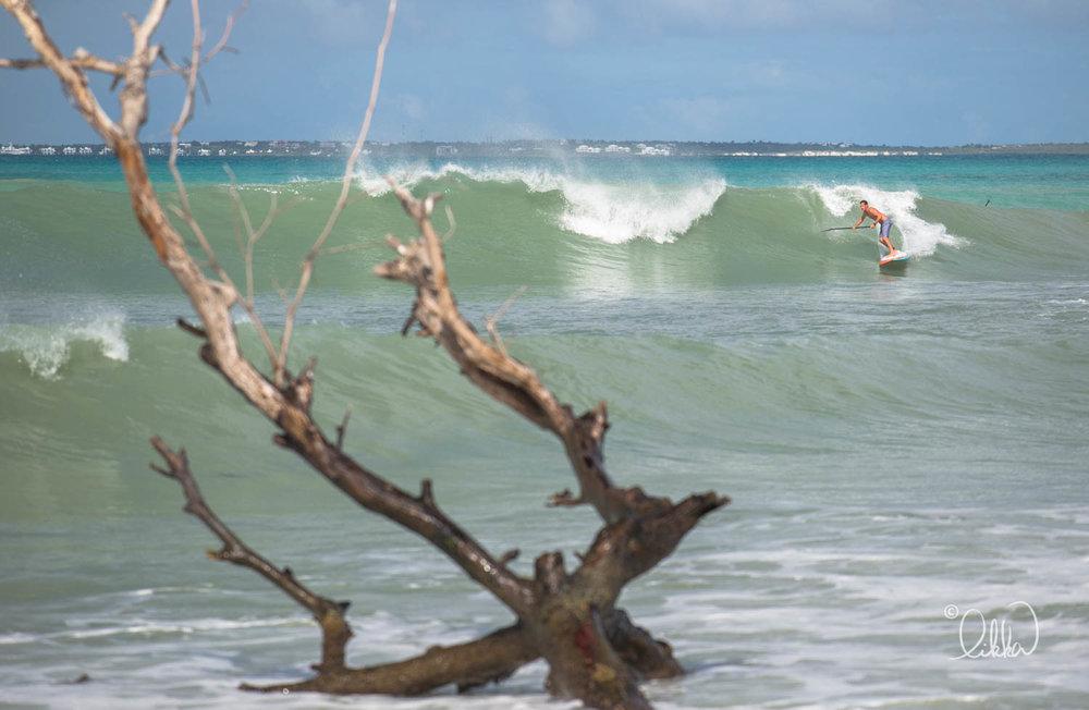 surf-likka-70.jpg